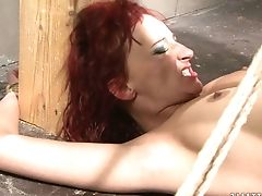 Cougar Has Superb Assfuck Practice And Widens It Here And Now